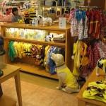Ganhar dinheiro com uma Pet Shop