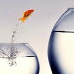 Como as empresas devem se preparar para 2013