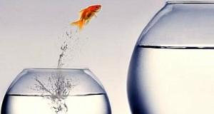 empresas devem se preparar 2013