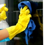 Nova lei das domésticas influencia setores de limpeza e congelados
